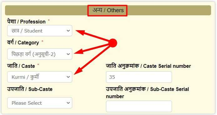 Other Details for Online Apply Caste Certificate in Bihar