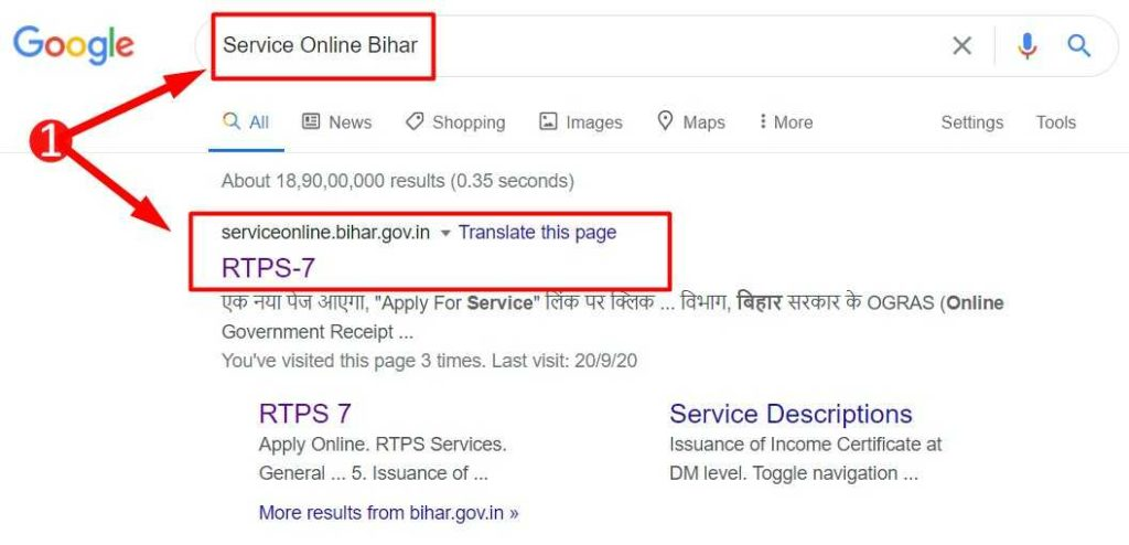Search Result for Service Online Bihar in Google