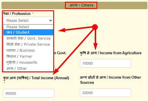 Occupation and Income Details for Online Income Certificate apply Bihar via Service Plus Portal